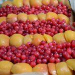 Prajitura cu crema alba, coacaze rosii si caise (7)-5